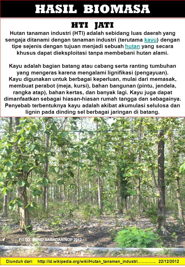 HASIL BIOMASA HTI JATI Hutan tanaman industri (HTI) adalah sebidang luas daerah yang sengaja ditanami dengan tanaman industri (terutama kayu) dengan tipe sejenis dengan tujuan menjadi sebuah hutan yang secara khusus dapat dieksploitasi tanpa membebani hutan alami.kayuhutan Kayu adalah bagian batang atau cabang serta ranting tumbuhan yang mengeras karena mengalami lignifikasi (pengayuan).