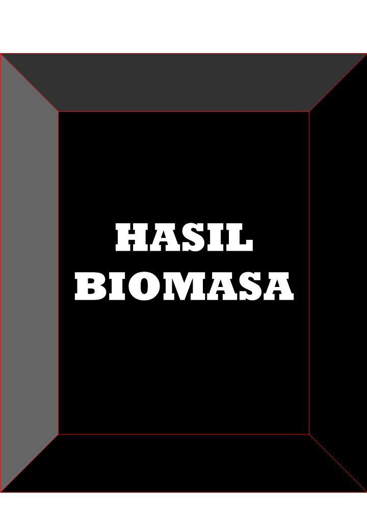 HASIL BIOMASA