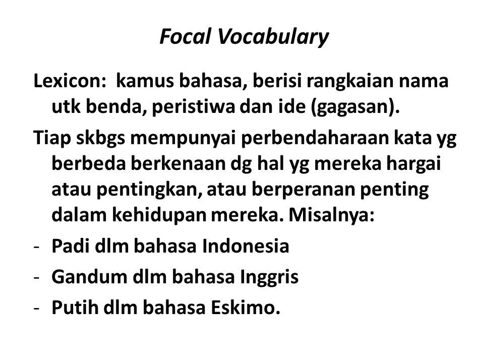 Focal Vocabulary Lexicon: kamus bahasa, berisi rangkaian nama utk benda, peristiwa dan ide (gagasan). Tiap skbgs mempunyai perbendaharaan kata yg berb