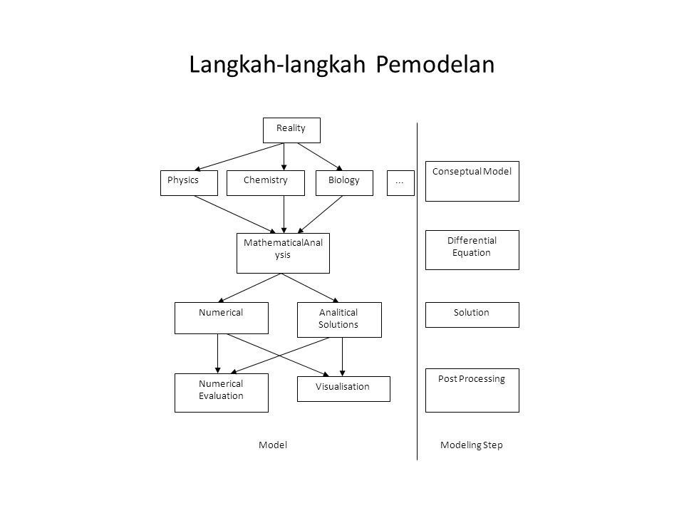 Langkah-langkah Pemodelan Reality PhysicsChemistryBiology MathematicalAnal ysis Post Processing Analitical Solutions Visualisation Solution Model Cons