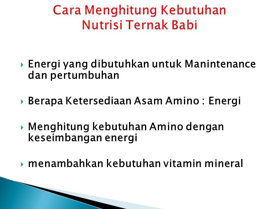  Energi yang dibutuhkan untuk Manintenance dan pertumbuhan  Berapa Ketersediaan Asam Amino : Energi  Menghitung kebutuhan Amino dengan keseimbangan energi  menambahkan kebutuhan vitamin mineral