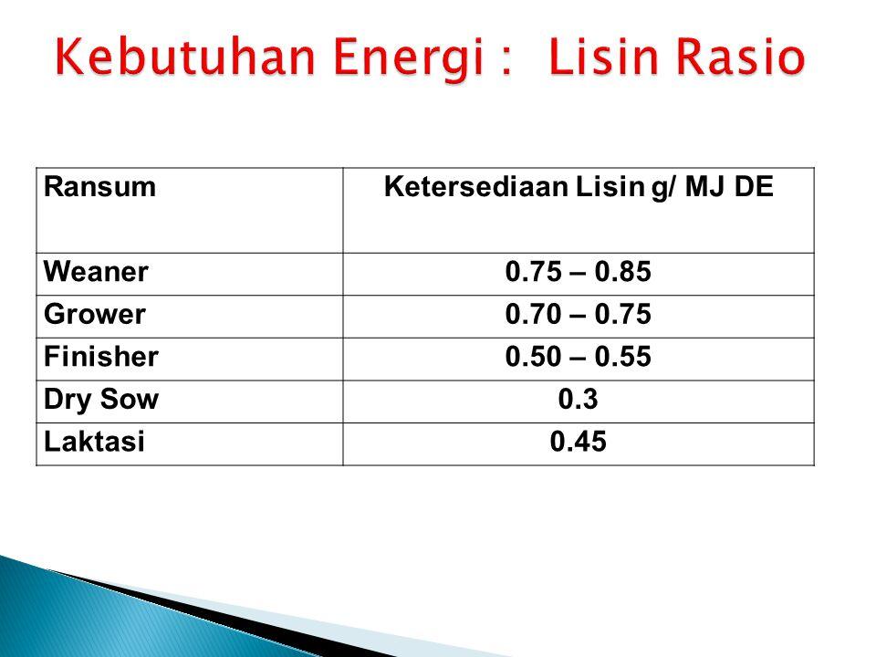 RansumKetersediaan Lisin g/ MJ DE Weaner0.75 – 0.85 Grower0.70 – 0.75 Finisher0.50 – 0.55 Dry Sow0.3 Laktasi0.45