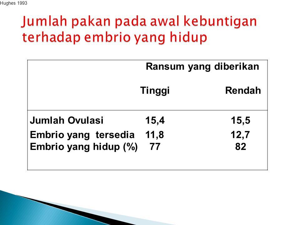 Ransum yang diberikan Tinggi Rendah Jumlah Ovulasi 15,4 15,5 Embrio yang tersedia 11,8 12,7 Embrio yang hidup (%) 77 82 Hughes 1993