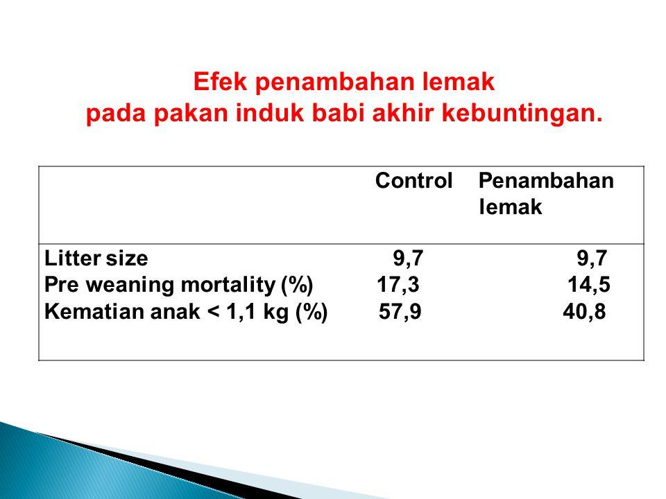 Control Penambahan lemak Litter size 9,7 9,7 Pre weaning mortality (%) 17,3 14,5 Kematian anak < 1,1 kg (%) 57,9 40,8 Efek penambahan lemak pada pakan induk babi akhir kebuntingan.