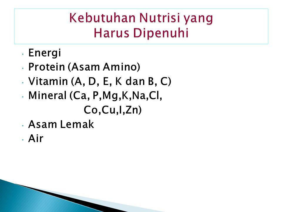 Energi Protein (Asam Amino) Vitamin (A, D, E, K dan B, C) Mineral (Ca, P,Mg,K,Na,Cl, Co,Cu,I,Zn) Asam Lemak Air