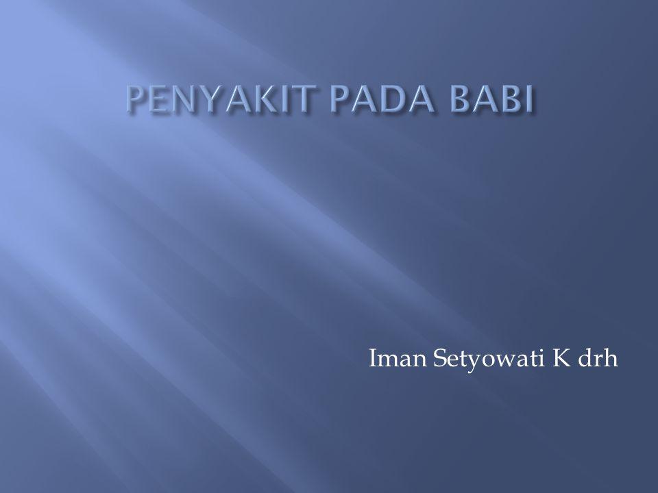 Iman Setyowati K drh
