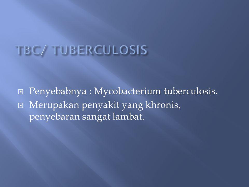 Penyebabnya : Mycobacterium tuberculosis.  Merupakan penyakit yang khronis, penyebaran sangat lambat.