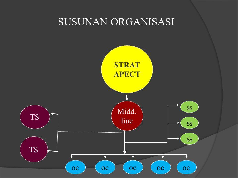 STRAT APECT Midd. line oc ss TS SUSUNAN ORGANISASI
