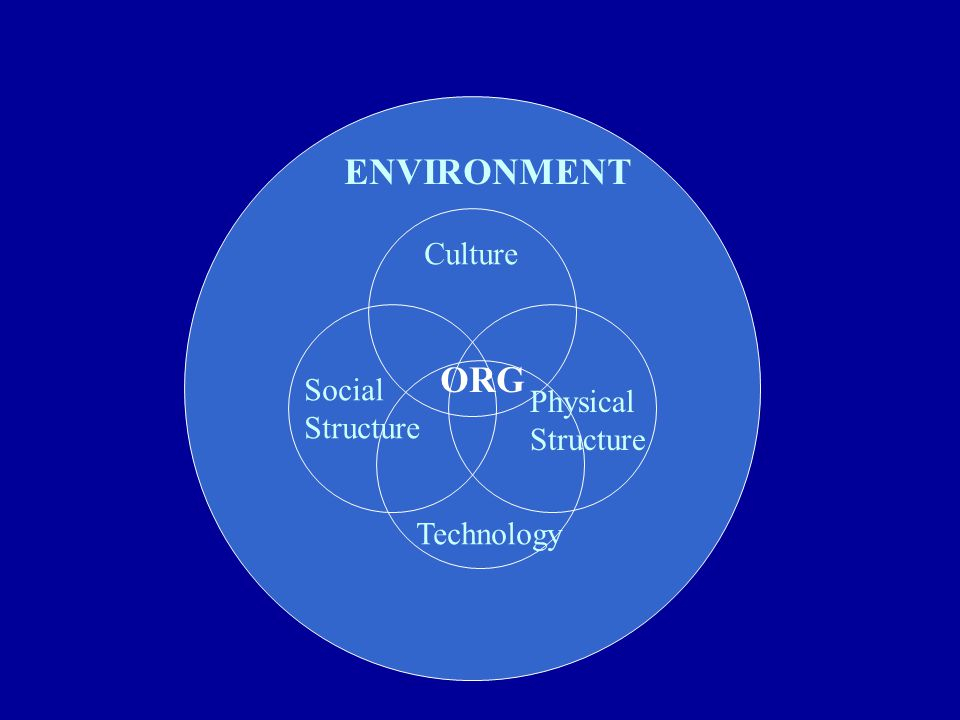 ENVIRONMENT Culture Social Structure Physical Structure Technology ORG