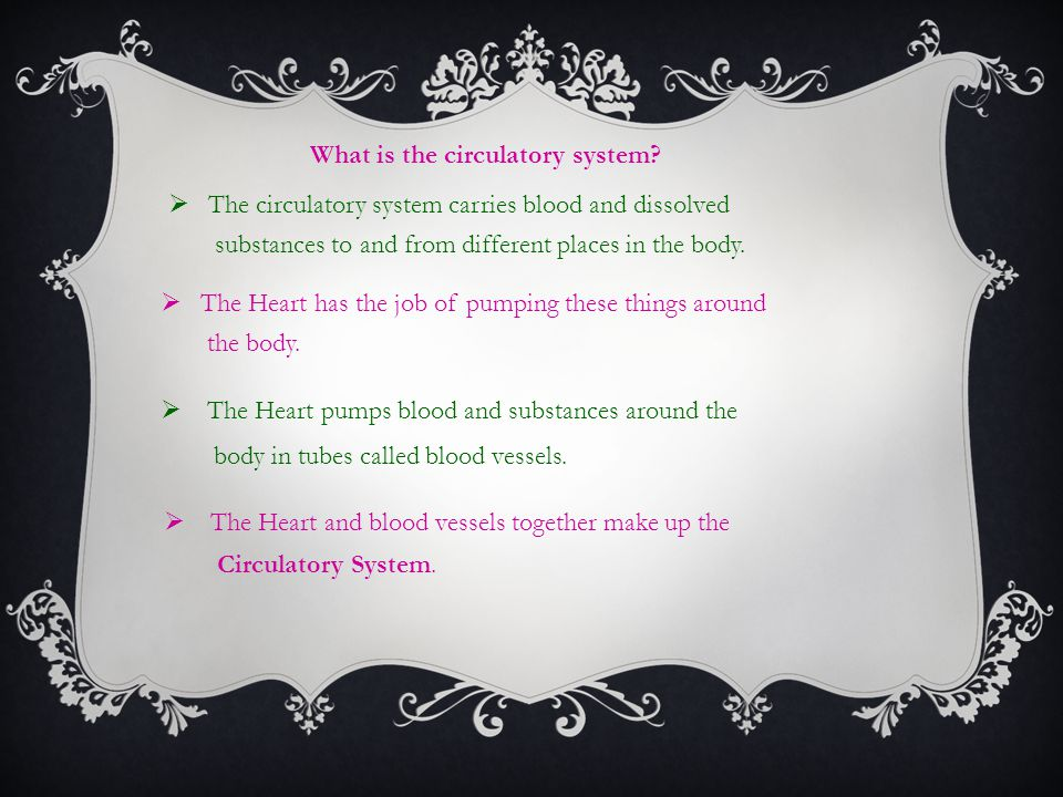  The circulatory system carries blood and dissolved substances to and from different places in the body.  The Heart has the job of pumping these thi