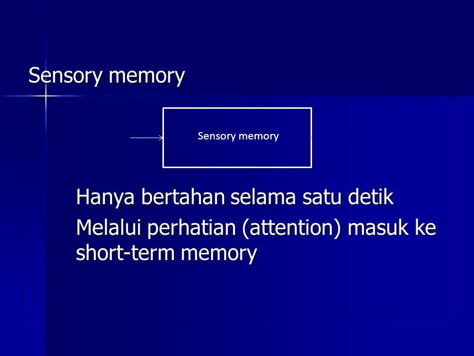Sensory memory Hanya bertahan selama satu detik Melalui perhatian (attention) masuk ke short-term memory Sensory memory