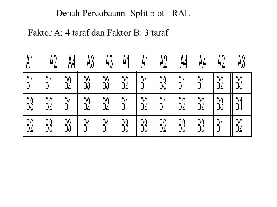 Denah Percobaann Split plot - RAL Faktor A: 4 taraf dan Faktor B: 3 taraf