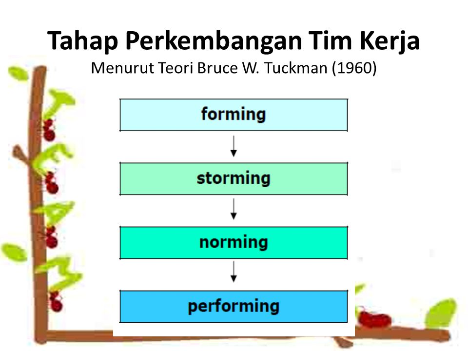 Tahap Perkembangan Tim Kerja Menurut Teori Bruce W. Tuckman (1960)