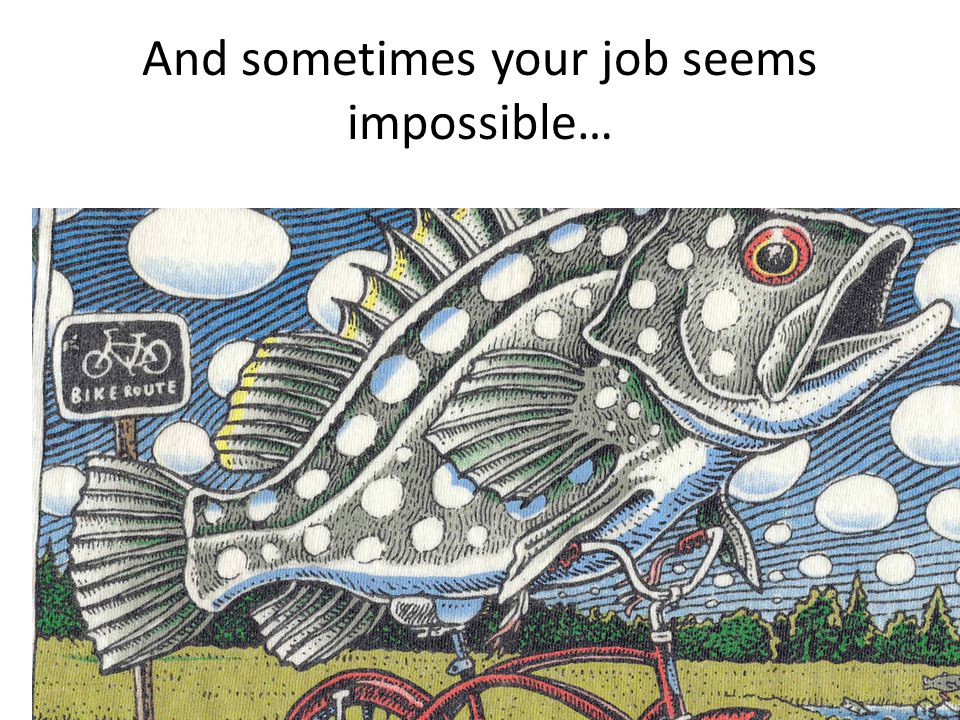 And sometimes your job seems impossible…