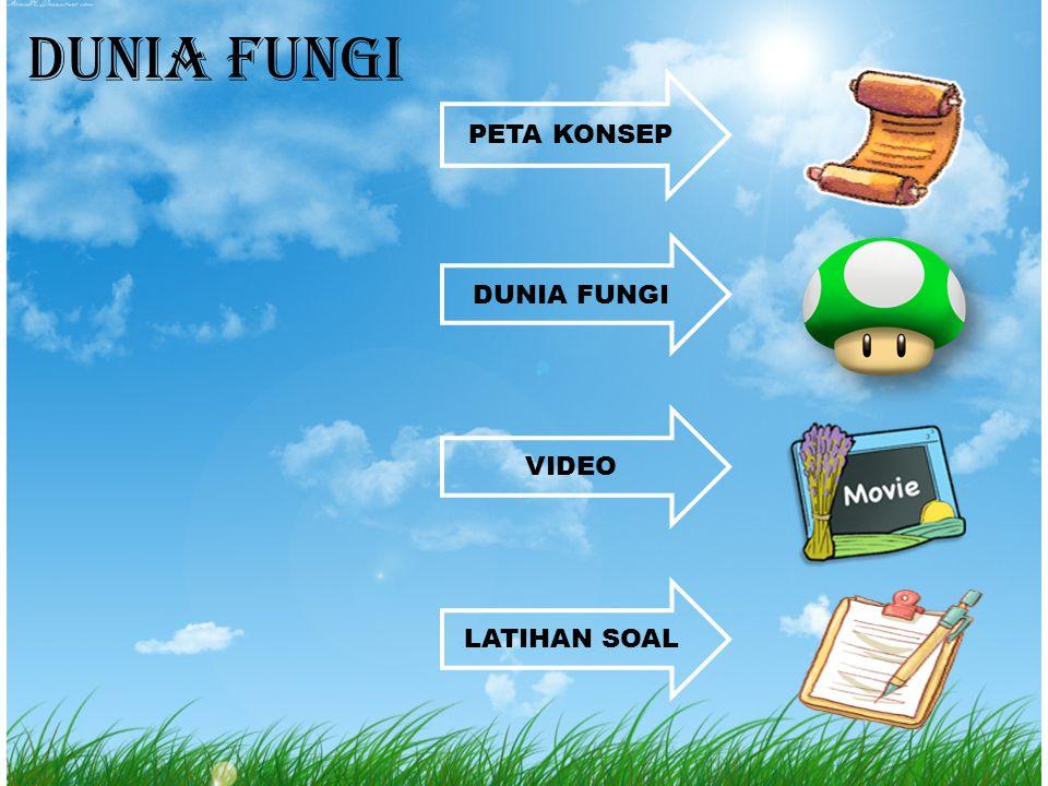 Peran Fungi bagi Kehidupan Peran Fungi bagi Kehidupan