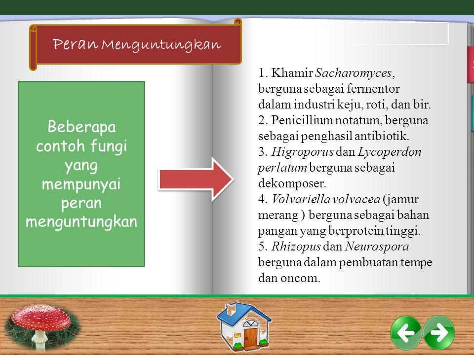 1.Khamir Sacharomyces, berguna sebagai fermentor dalam industri keju, roti, dan bir.