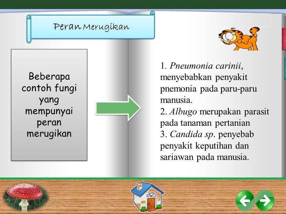 Peran Merugikan Beberapa contoh fungi yang mempunyai peran merugikan 1. Pneumonia carinii, menyebabkan penyakit pnemonia pada paru-paru manusia. 2. Al