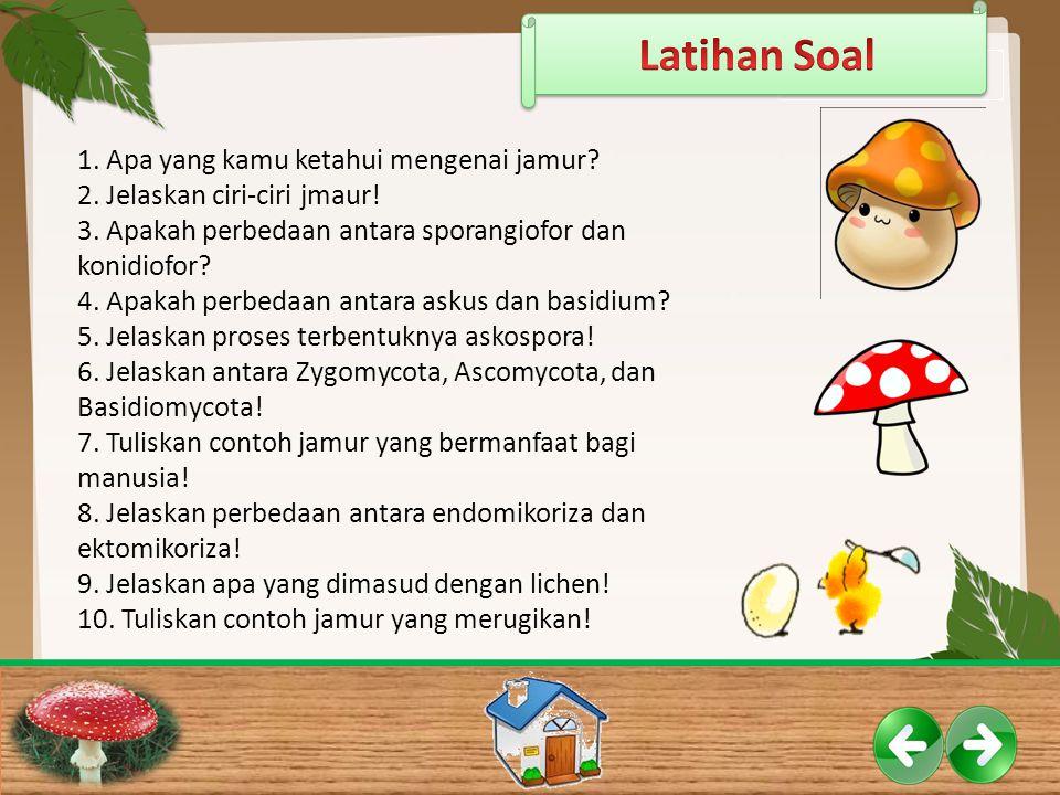 1. Apa yang kamu ketahui mengenai jamur? 2. Jelaskan ciri-ciri jmaur! 3. Apakah perbedaan antara sporangiofor dan konidiofor? 4. Apakah perbedaan anta