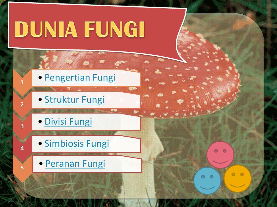 Apakah itu fungi (jamur) .