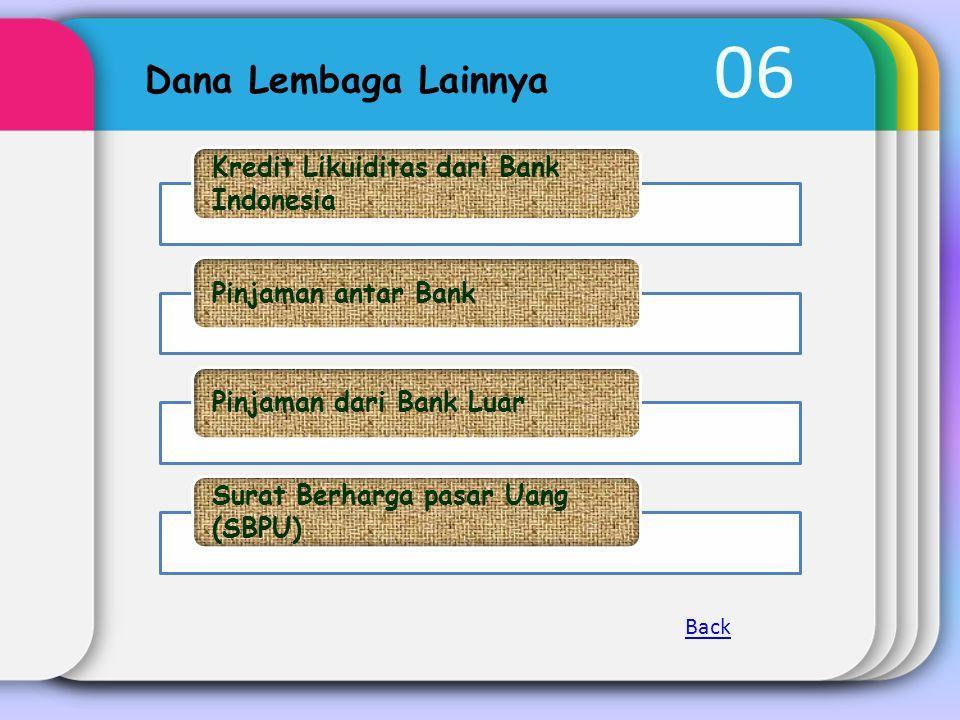 06 Dana Lembaga Lainnya Kredit Likuiditas dari Bank Indonesia Pinjaman antar BankPinjaman dari Bank Luar Surat Berharga pasar Uang (SBPU) Back