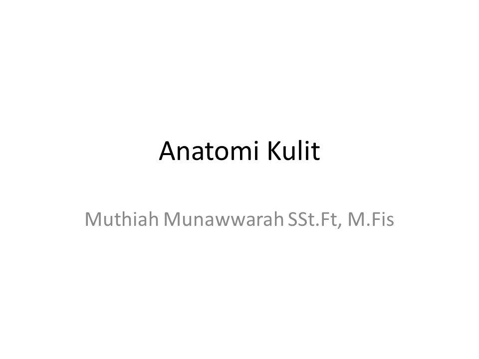 Anatomi Kulit Muthiah Munawwarah SSt.Ft, M.Fis