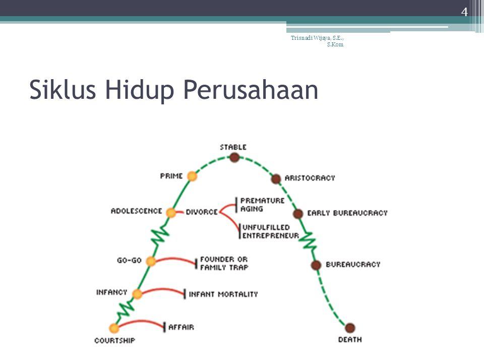 Siklus Hidup Perusahaan Trisnadi Wijaya, S.E., S.Kom 4