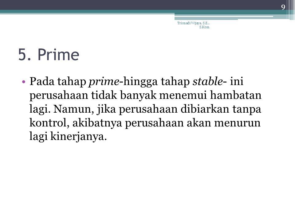 5. Prime Pada tahap prime-hingga tahap stable- ini perusahaan tidak banyak menemui hambatan lagi. Namun, jika perusahaan dibiarkan tanpa kontrol, akib
