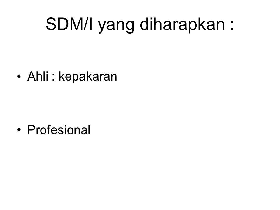 SDM/I yang diharapkan : Ahli : kepakaran Profesional