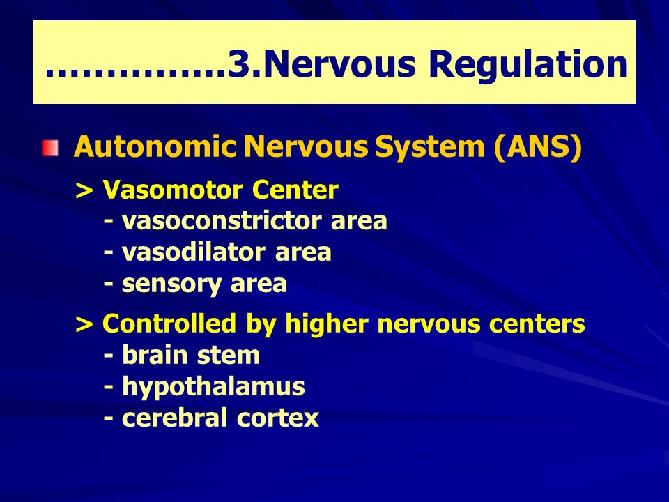 …………...3.Nervous Regulation Autonomic Nervous System (ANS) > Vasomotor Center - vasoconstrictor area - vasodilator area - sensory area > Controlled by