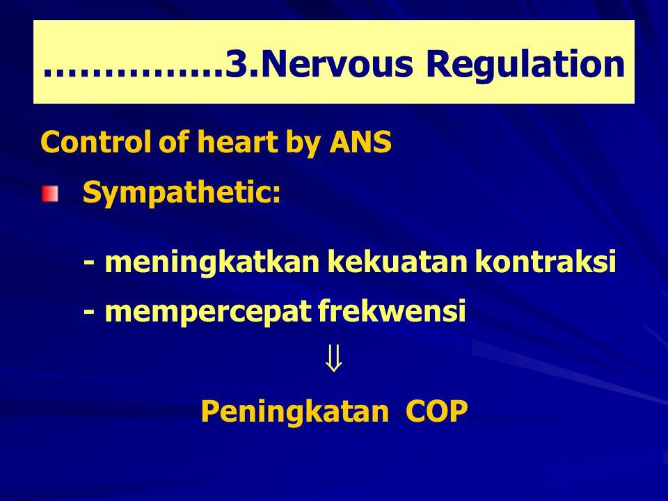 …………...3.Nervous Regulation Control of heart by ANS Sympathetic: - meningkatkan kekuatan kontraksi - mempercepat frekwensi  Peningkatan COP