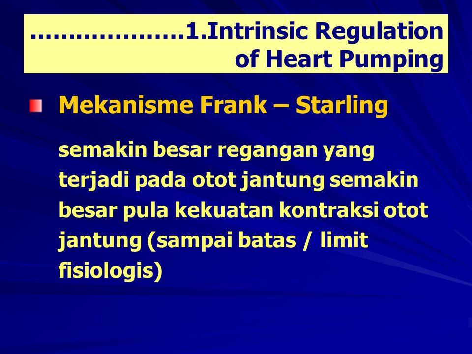 ..…..………….1.Intrinsic Regulation of Heart Pumping Mekanisme Frank – Starling semakin besar regangan yang terjadi pada otot jantung semakin besar pula