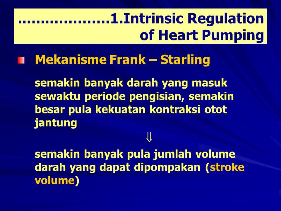 ..…..………….1.Intrinsic Regulation of Heart Pumping Mekanisme Frank – Starling semakin banyak darah yang masuk sewaktu periode pengisian, semakin besar pula kekuatan kontraksi otot jantung  semakin banyak pula jumlah volume darah yang dapat dipompakan (stroke volume)