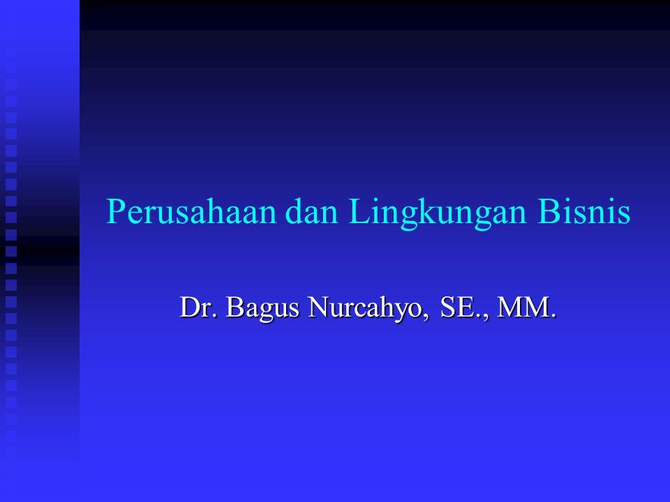 Perusahaan dan Lingkungan Bisnis Dr. Bagus Nurcahyo, SE., MM.
