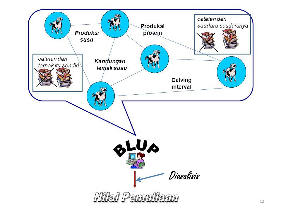 12 catatan dari ternak itu sendiri Dianalisis catatan dari saudara-saudaranya Produksi susu Calving interval Produksi protein Kandungan lemak susu