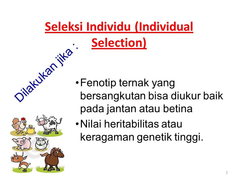 3 Seleksi Individu (Individual Selection) Dilakukan jika : Fenotip ternak yang bersangkutan bisa diukur baik pada jantan atau betina Nilai heritabilitas atau keragaman genetik tinggi.