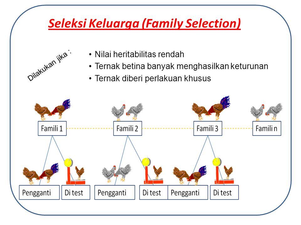 Seleksi Keluarga (Family Selection) Dilakukan jika : Nilai heritabilitas rendah Ternak betina banyak menghasilkan keturunan Ternak diberi perlakuan khusus