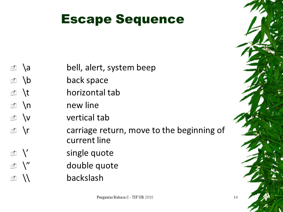 Escape Sequence Pengantar Bahasa C - TIF UB 201014  \abell, alert, system beep  \b back space  \thorizontal tab  \nnew line  \v vertical tab  \rcarriage return, move to the beginning of current line  \'single quote  \ double quote  \\backslash