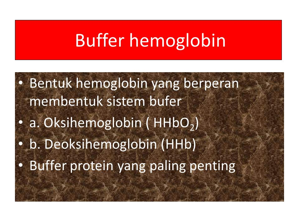 Buffer hemoglobin Bentuk hemoglobin yang berperan membentuk sistem bufer a. Oksihemoglobin ( HHbO 2 ) b. Deoksihemoglobin (HHb) Buffer protein yang pa
