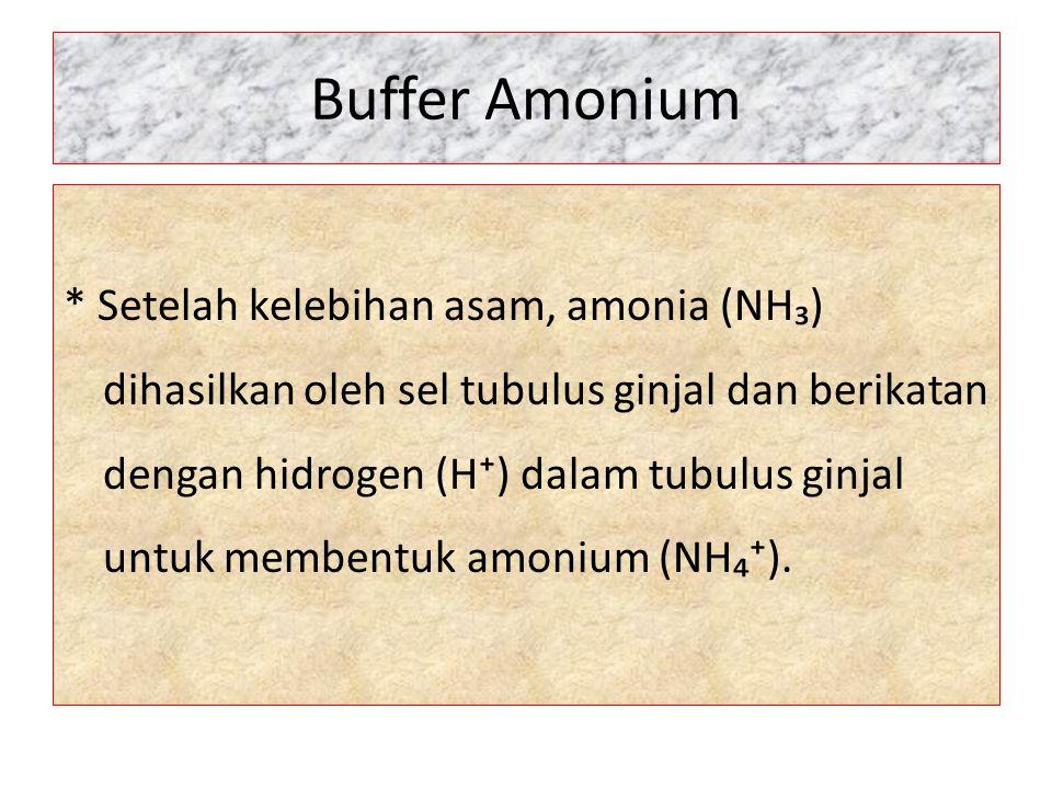 Buffer Amonium * Setelah kelebihan asam, amonia (NH₃) dihasilkan oleh sel tubulus ginjal dan berikatan dengan hidrogen (H⁺) dalam tubulus ginjal untuk
