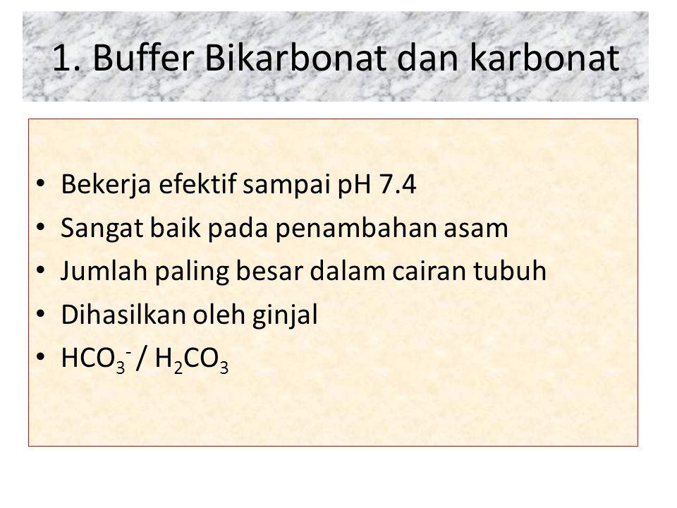 1. Buffer Bikarbonat dan karbonat Bekerja efektif sampai pH 7.4 Sangat baik pada penambahan asam Jumlah paling besar dalam cairan tubuh Dihasilkan ole