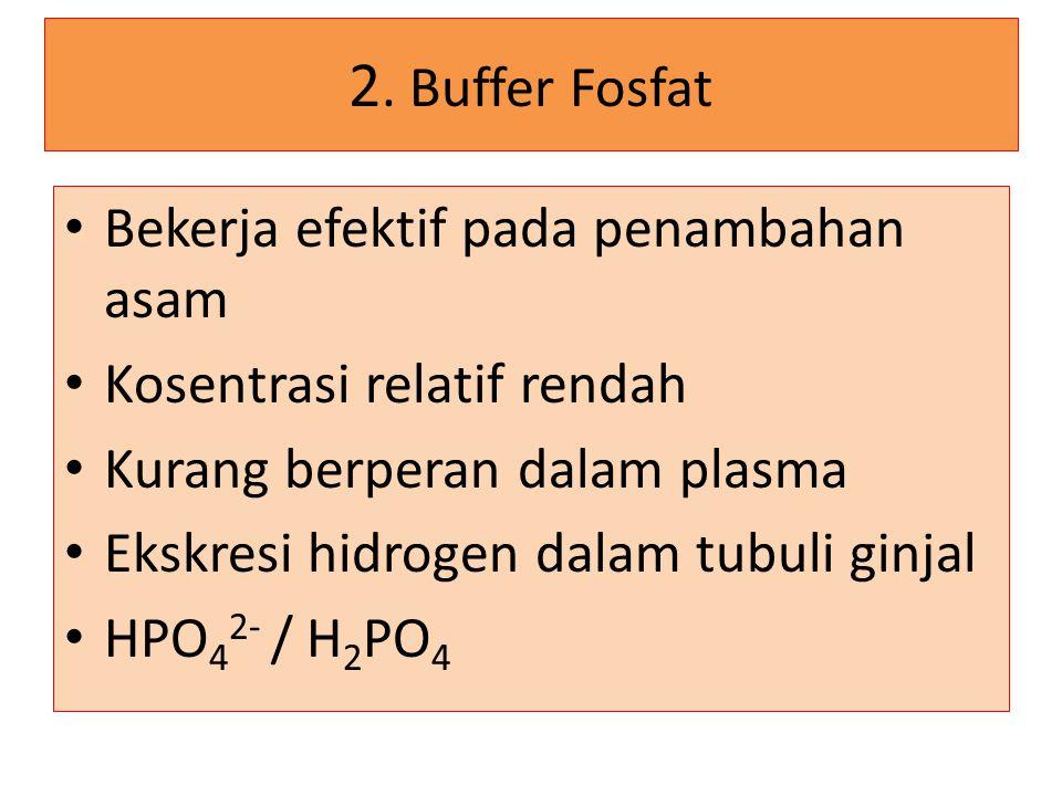 2. Buffer Fosfat Bekerja efektif pada penambahan asam Kosentrasi relatif rendah Kurang berperan dalam plasma Ekskresi hidrogen dalam tubuli ginjal HPO