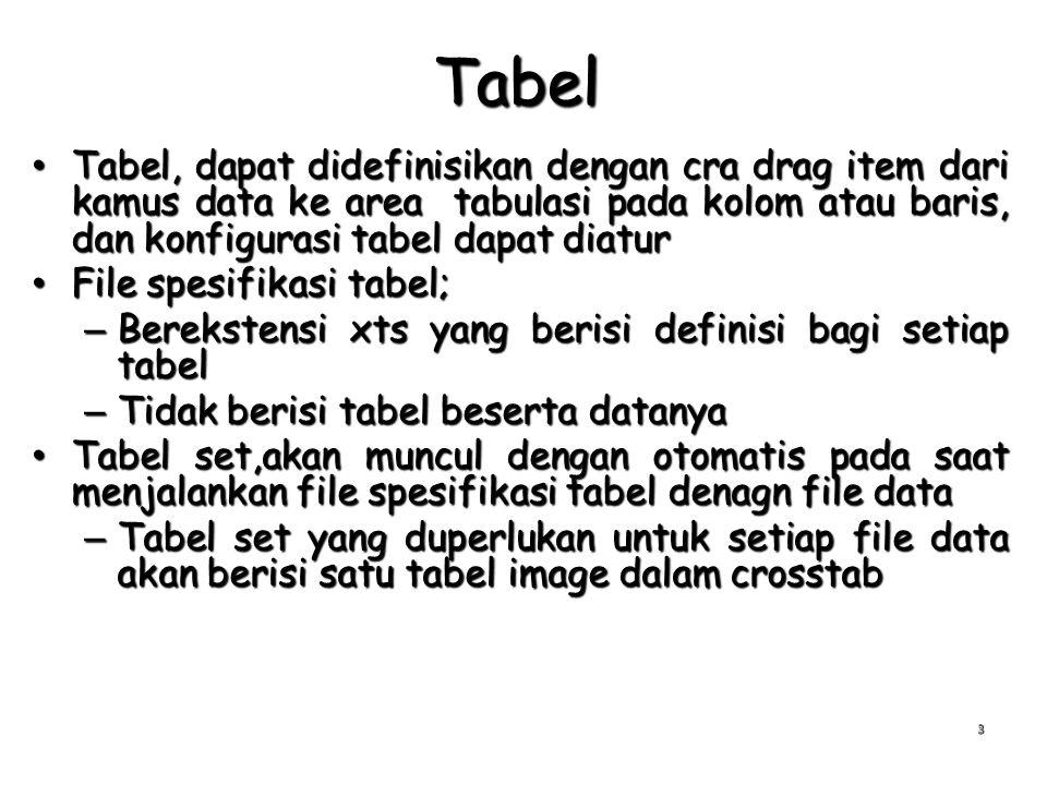 Tabel Tabel, dapat didefinisikan dengan cra drag item dari kamus data ke area tabulasi pada kolom atau baris, dan konfigurasi tabel dapat diatur Tabel, dapat didefinisikan dengan cra drag item dari kamus data ke area tabulasi pada kolom atau baris, dan konfigurasi tabel dapat diatur File spesifikasi tabel; File spesifikasi tabel; – Berekstensi xts yang berisi definisi bagi setiap tabel – Tidak berisi tabel beserta datanya Tabel set,akan muncul dengan otomatis pada saat menjalankan file spesifikasi tabel denagn file data Tabel set,akan muncul dengan otomatis pada saat menjalankan file spesifikasi tabel denagn file data – Tabel set yang duperlukan untuk setiap file data akan berisi satu tabel image dalam crosstab 3