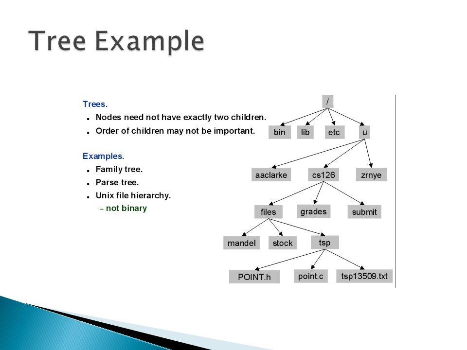  int height(Tree *root)  {  if (root == NULL) return -1;  int u = height(root->left), v = height(root- >right);  if (u > v) return u+1;  else return v+1;  }  Penghitungan kedalaman dihitung dari setelah root, yang dimulai dari subtree bagian kiri kemudian ke subtree bagian kanan.