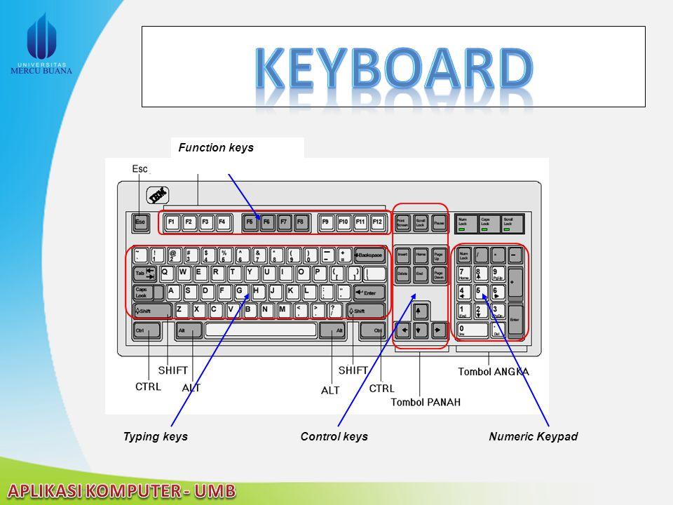 Typing keysControl keysNumeric Keypad Function keys