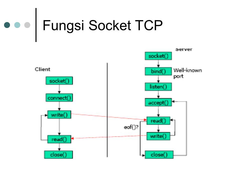 Fungsi Socket TCP