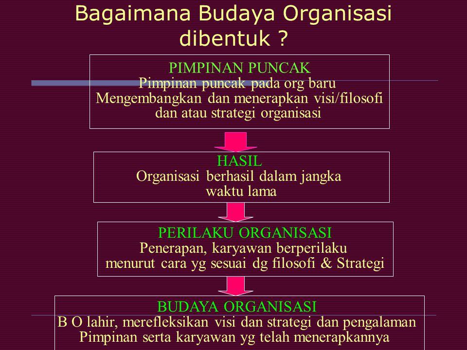 Bagaimana Budaya Organisasi dibentuk ? PIMPINAN PUNCAK Pimpinan puncak pada org baru Mengembangkan dan menerapkan visi/filosofi dan atau strategi orga