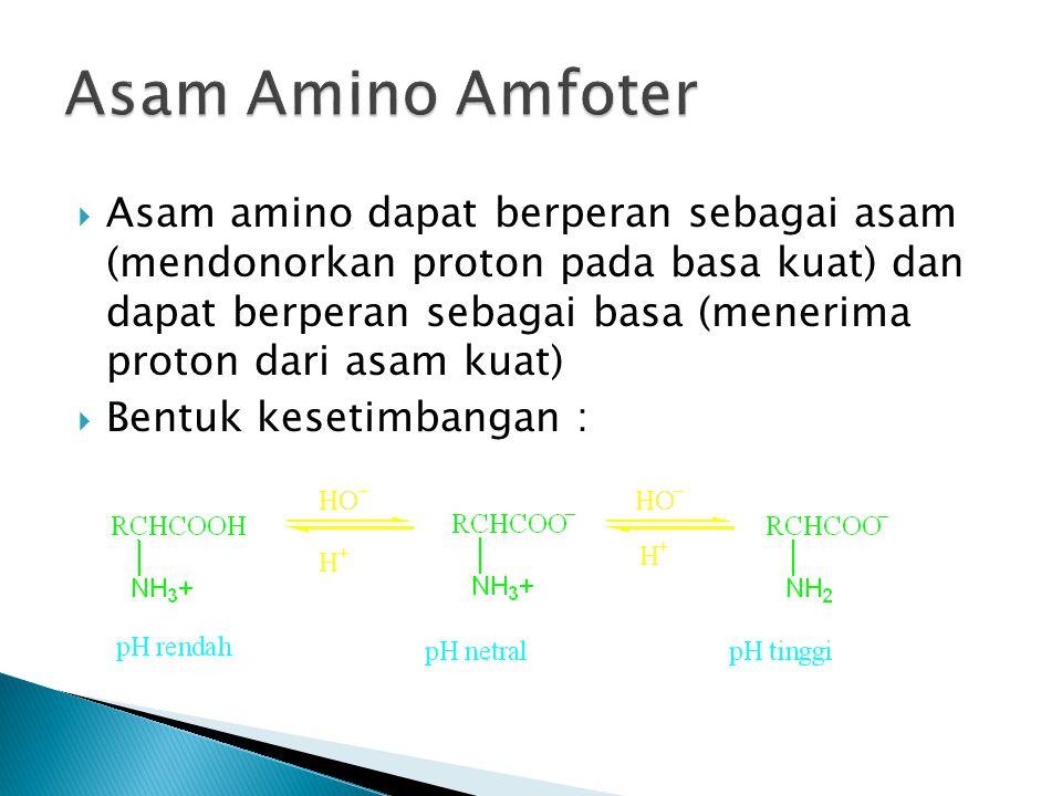  Kelompok Asam amino yang jarang didapat sebagai satuan pembentuk protein seperti 4- hidroksil prolin  Kelompok asam amino yang sama sekali tidak merupakan satuan pembentuk protein seperti Ornitin