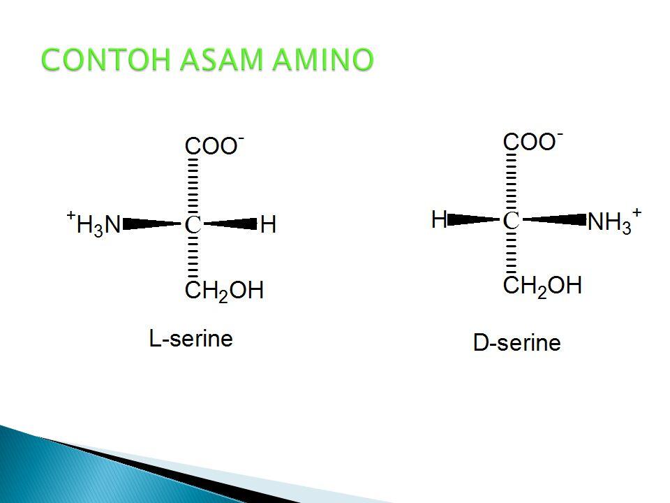  Didasarkan pada struktur D – gliseraldehid jika gugus NH 3 + terletak disebelah kanan  diberi awalan D, jika NH 3 + dikiri  diberi awalan L.