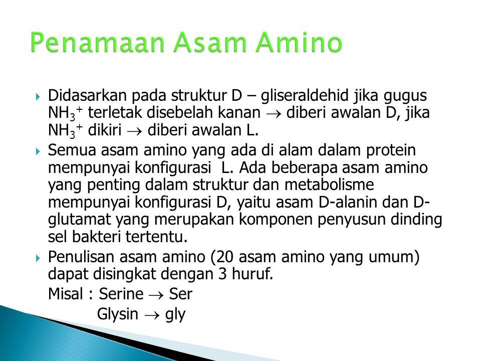  Aminasi asam a-halo (subtitusi)  Sintesis Strecker  Amin