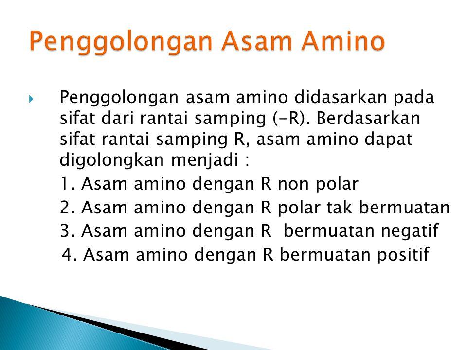  Penggolongan asam amino didasarkan pada sifat dari rantai samping (-R).
